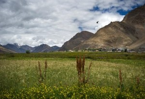Lahaul Spiti Valley Tour Packages